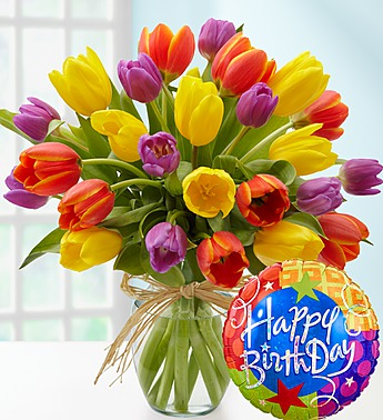 Hy Birthday Tulips